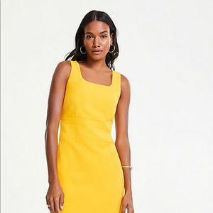 Ann Taylor Square Neck Sleeveless Dress W14